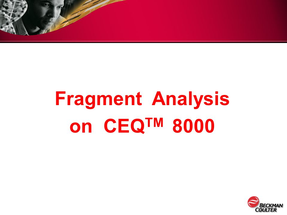 Fragment Analysis on CEQTM 8000