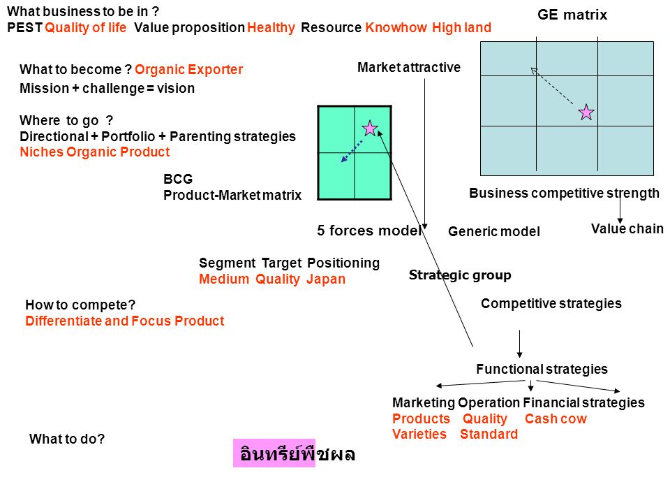 อินทรีย์พืชผล GE matrix 5 forces model What business to be in