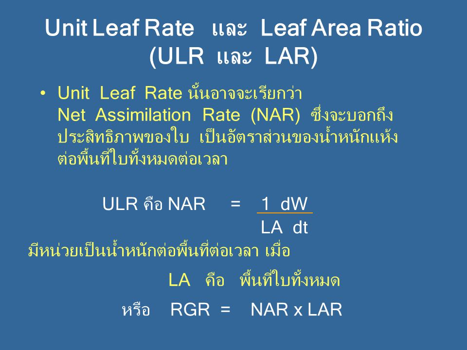 Unit Leaf Rate และ Leaf Area Ratio (ULR และ LAR)