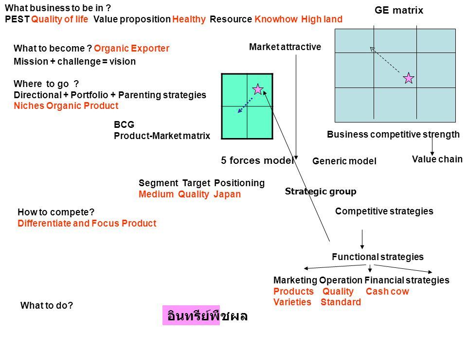 อินทรีย์พืชผล GE matrix 5 forces model What business to be in