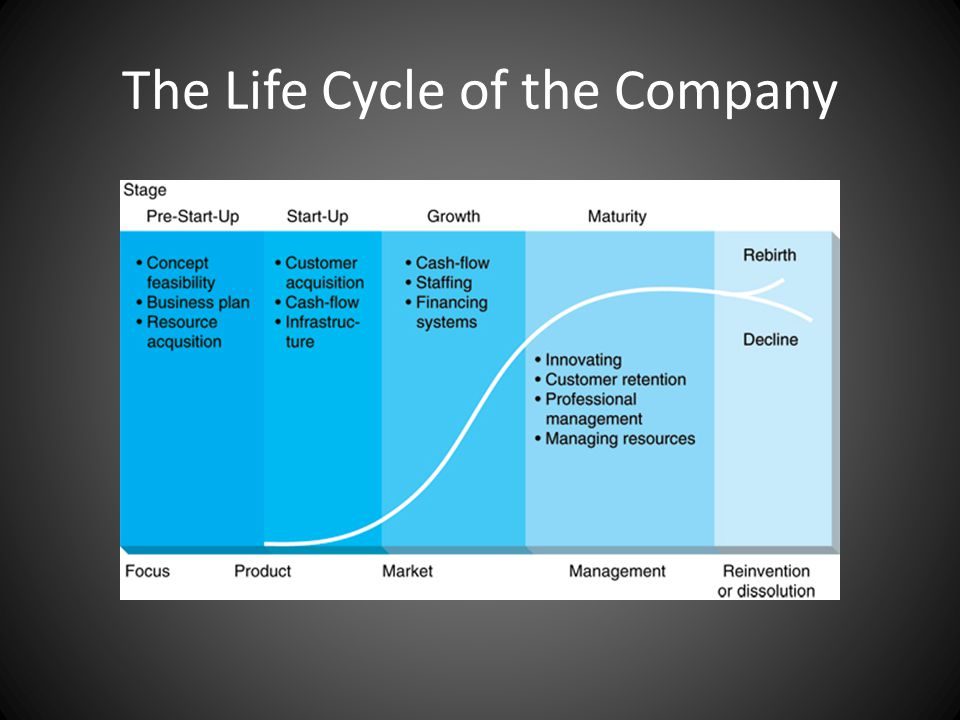 The Life Cycle of the Company