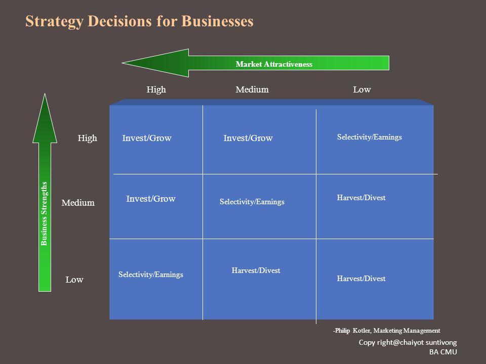 Strategy Decisions for Businesses