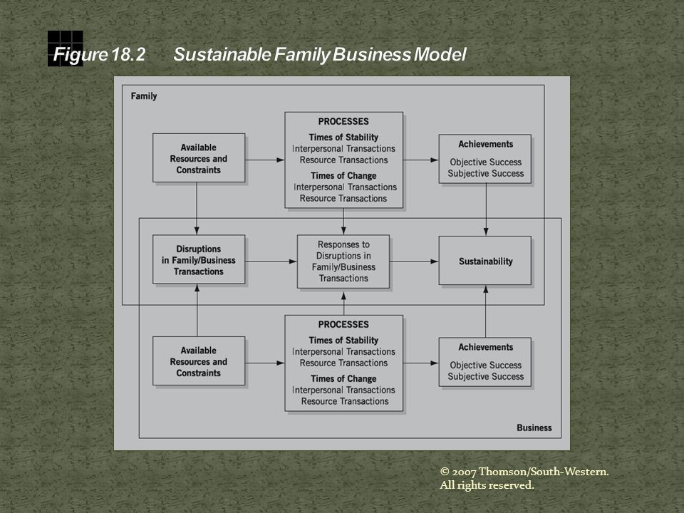 Figure 18.2 Sustainable Family Business Model