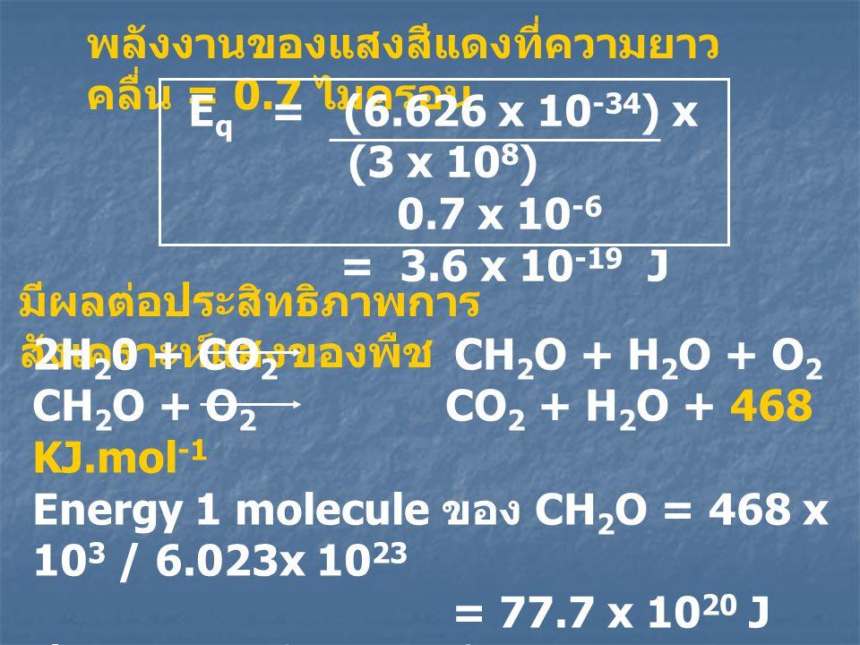 พลังงานของแสงสีแดงที่ความยาวคลื่น = 0.7 ไมครอน