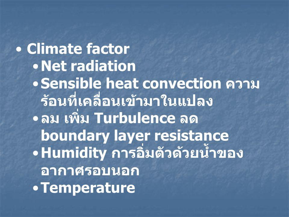 Climate factor Net radiation. Sensible heat convection ความร้อนที่เคลื่อนเข้ามาในแปลง. ลม เพิ่ม Turbulence ลด boundary layer resistance.