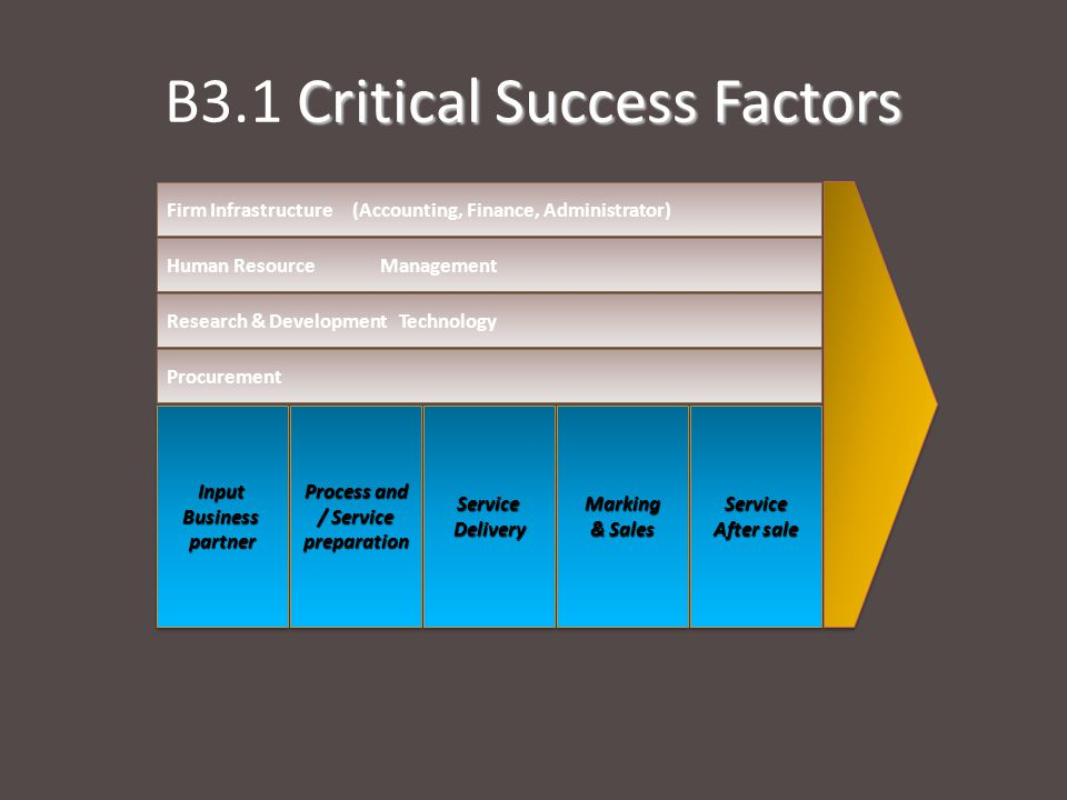 B3.1 Critical Success Factors