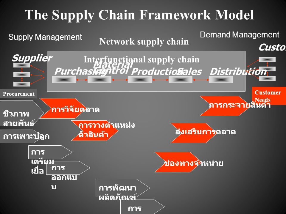 The Supply Chain Framework Model