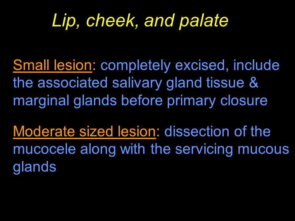 Lip, cheek, and palate Small lesion: completely excised, include the associated salivary gland tissue & marginal glands before primary closure.