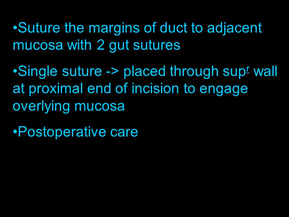 Suture the margins of duct to adjacent mucosa with 2 gut sutures