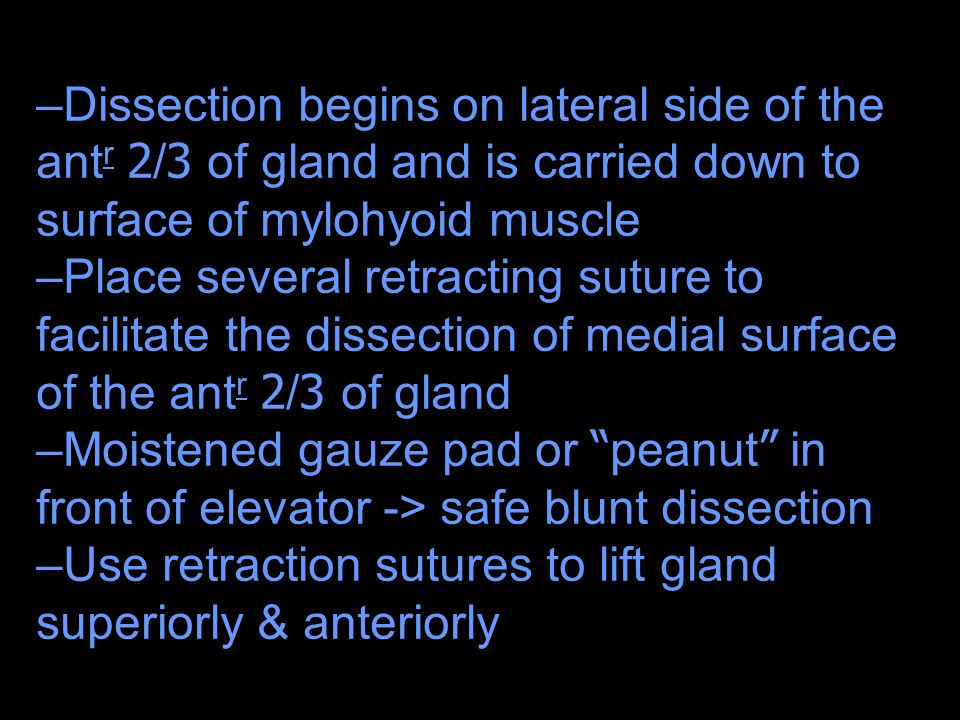 Dissection begins on lateral side of the antr 2/3 of gland and is carried down to surface of mylohyoid muscle