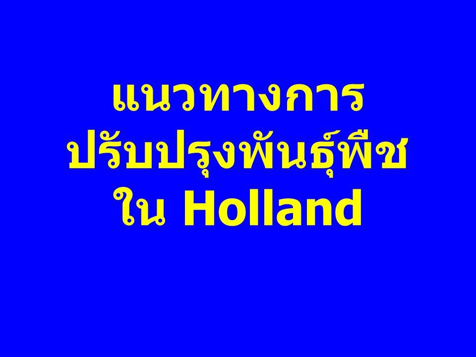 แนวทางการปรับปรุงพันธุ์พืชใน Holland