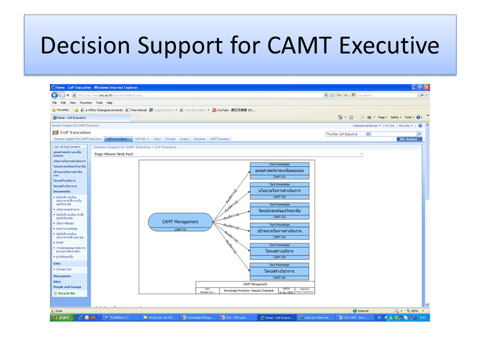 Decision Support for CAMT Executive