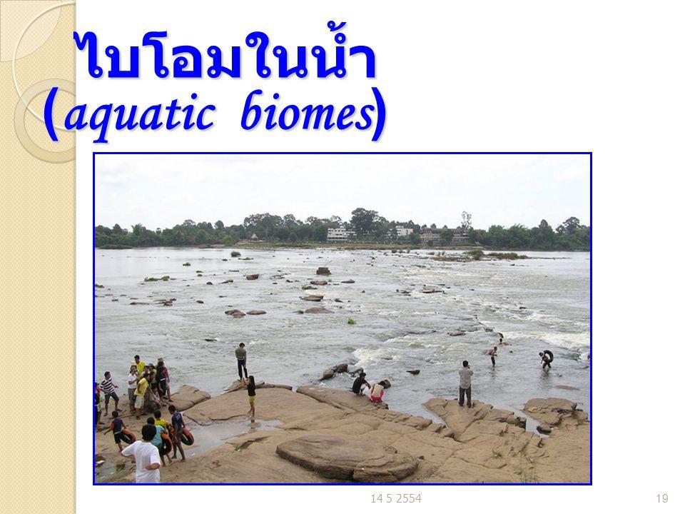 ไบโอมในน้ำ (aquatic biomes)