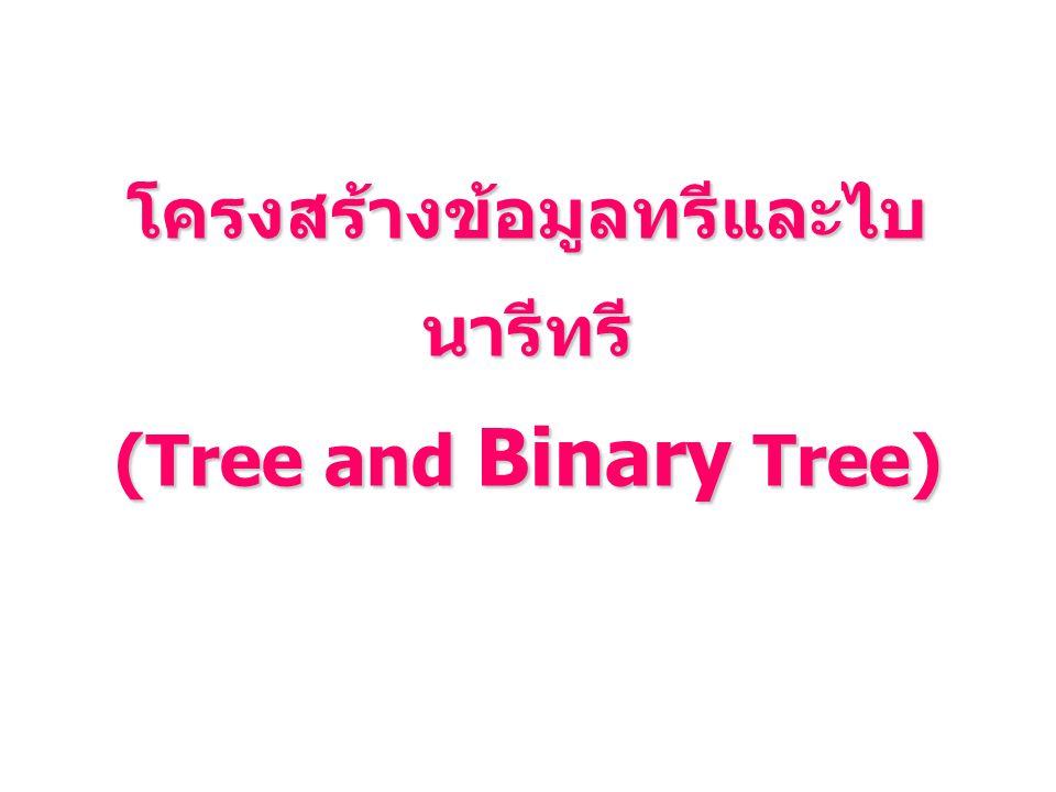 โครงสร้างข้อมูลทรีและไบนารีทรี (Tree and Binary Tree)