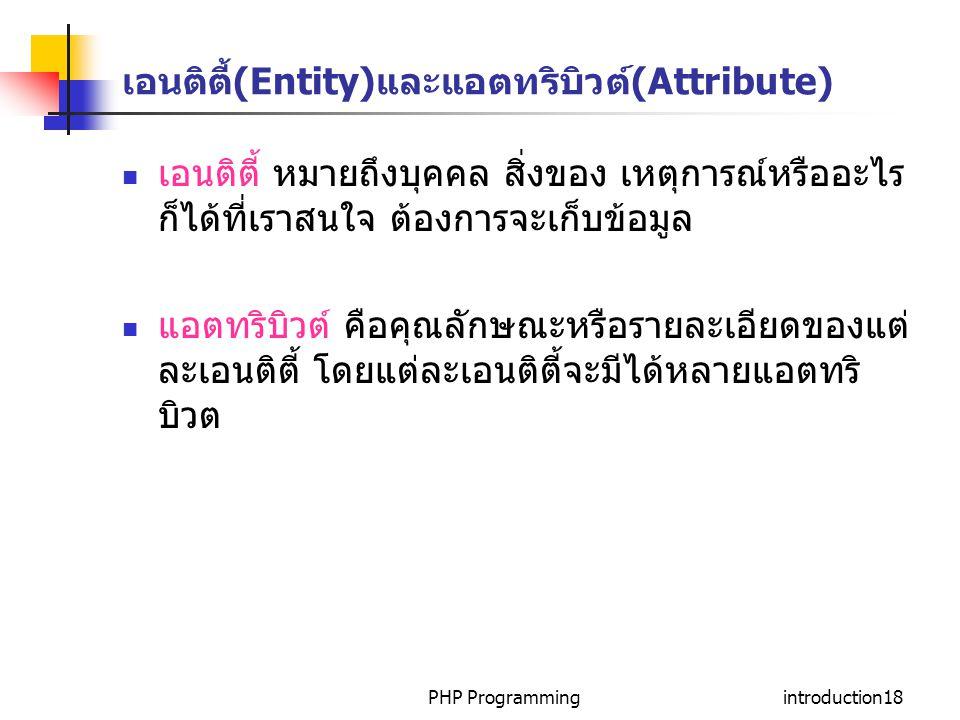 เอนติตี้(Entity)และแอตทริบิวต์(Attribute)