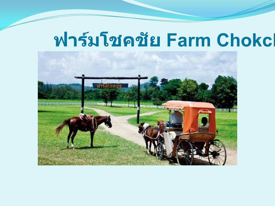 ฟาร์มโชคชัย Farm Chokchai