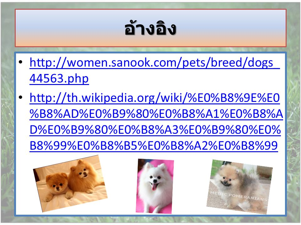 อ้างอิง http://women.sanook.com/pets/breed/dogs_44563.php