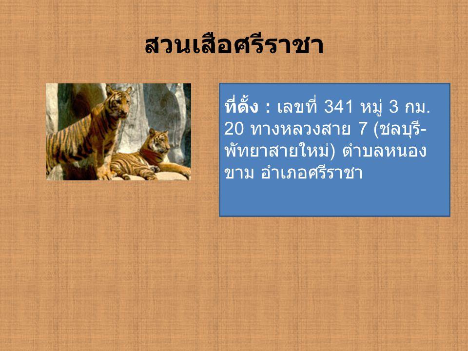 สวนเสือศรีราชา ที่ตั้ง : เลขที่ 341 หมู่ 3 กม.