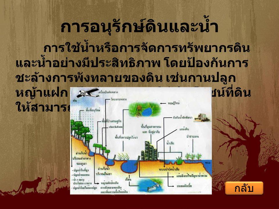 การอนุรักษ์ดินและน้ำ