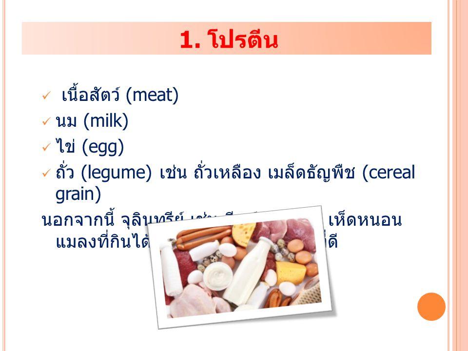 ถั่ว (legume) เช่น ถั่วเหลือง เมล็ดธัญพืช (cereal grain)