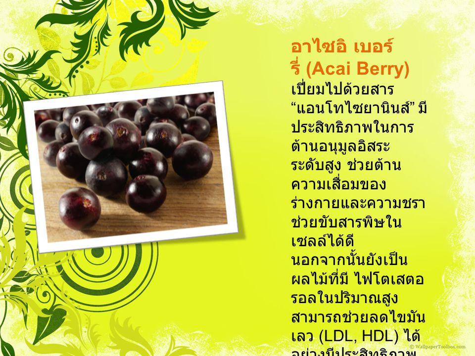 อาไซอิ เบอร์รี่ (Acai Berry)