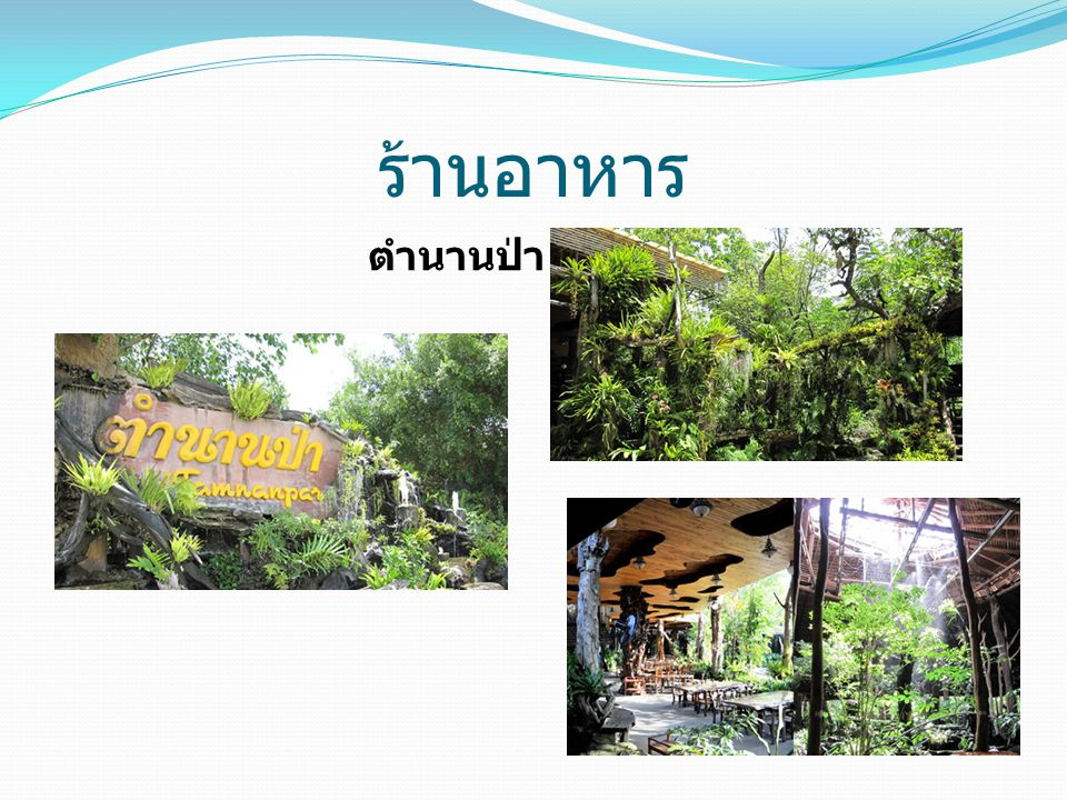 ร้านอาหาร ตำนานป่า