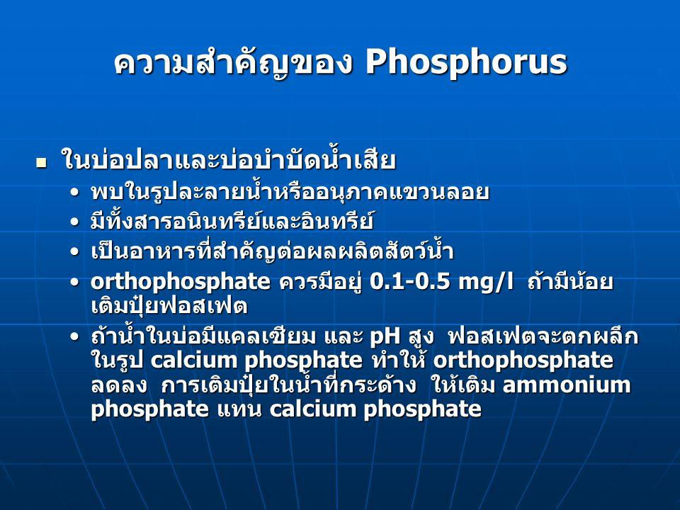 ความสำคัญของ Phosphorus