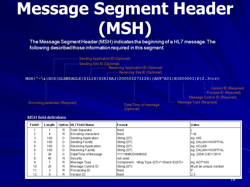 Message Segment Header (MSH)