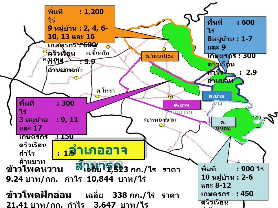 พื้นที่ : 1,200 ไร่ 9 หมู่บ้าน : 2, 4, 6-10, 13 และ 16. เกษตรกร : 600 ครัวเรือน. กำไร : 5.9 ล้านบาท.