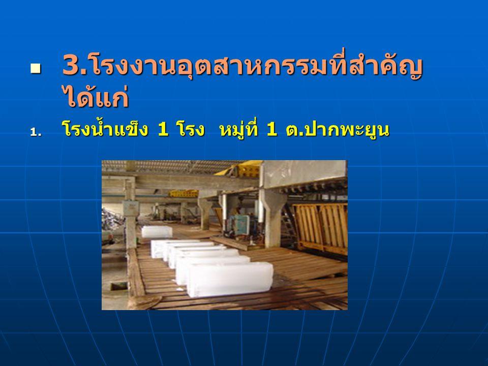 3.โรงงานอุตสาหกรรมที่สำคัญ ได้แก่