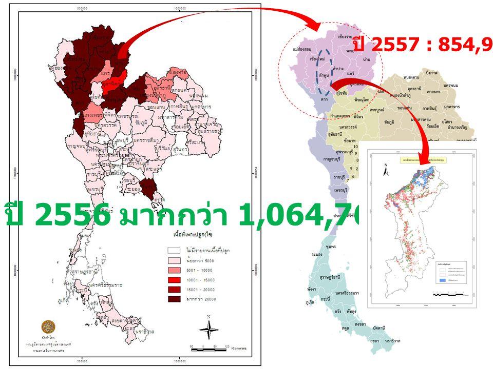 ปี 2557 : 854,916 ไร่ (1) ปี 2556 มากกว่า 1,064,762 ไร่