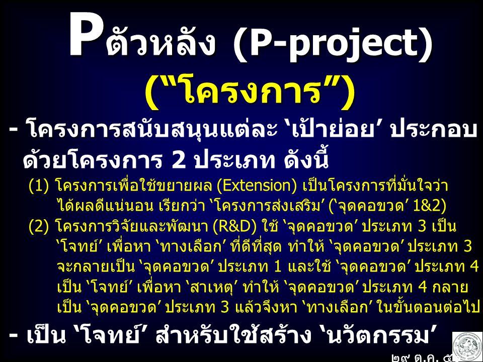 Pตัวหลัง (P-project) ( โครงการ )