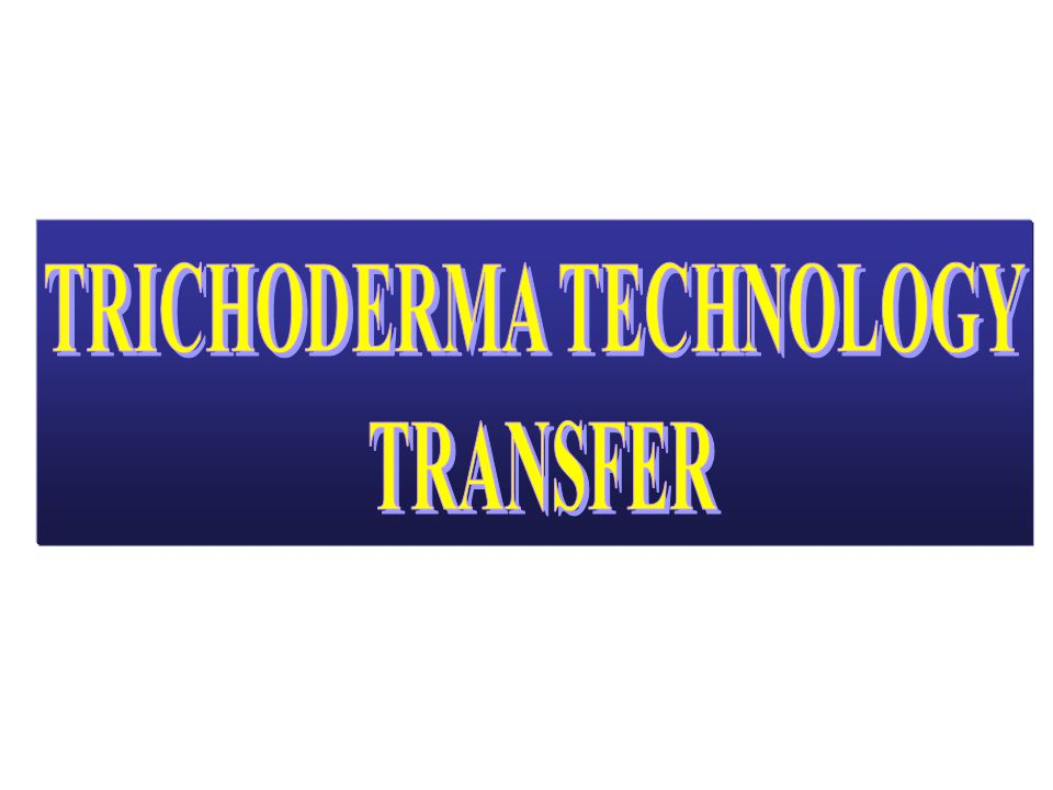 TRICHODERMA TECHNOLOGY