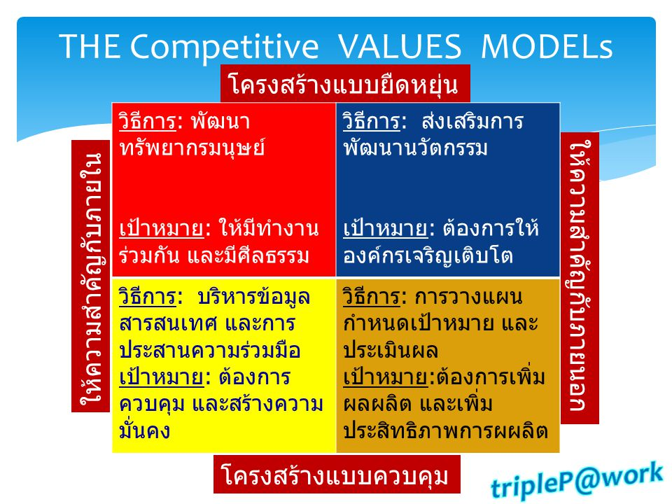 THE Competitive VALUES MODELs