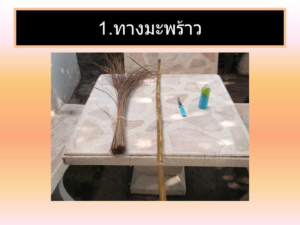 1.ทางมะพร้าว