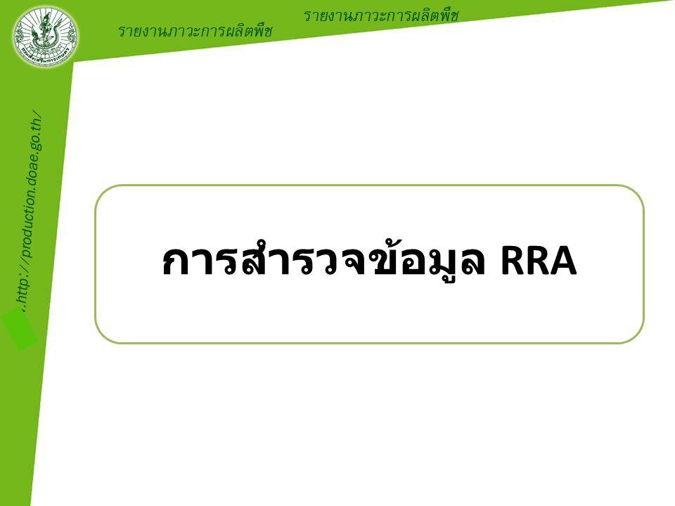 การสำรวจข้อมูล RRA