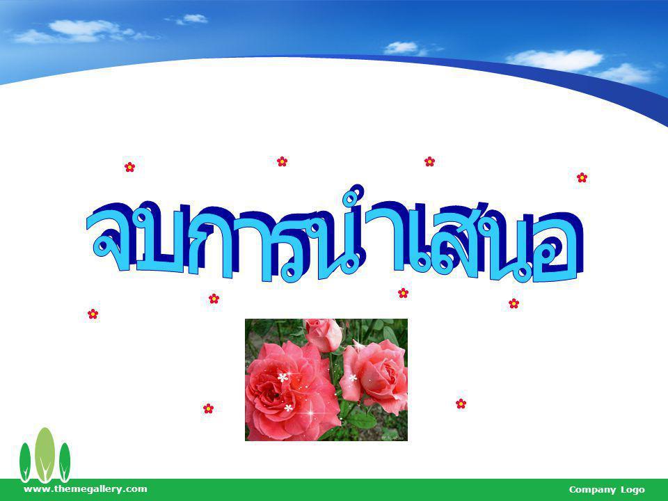 จบการนำเสนอ www.themegallery.com Company Logo