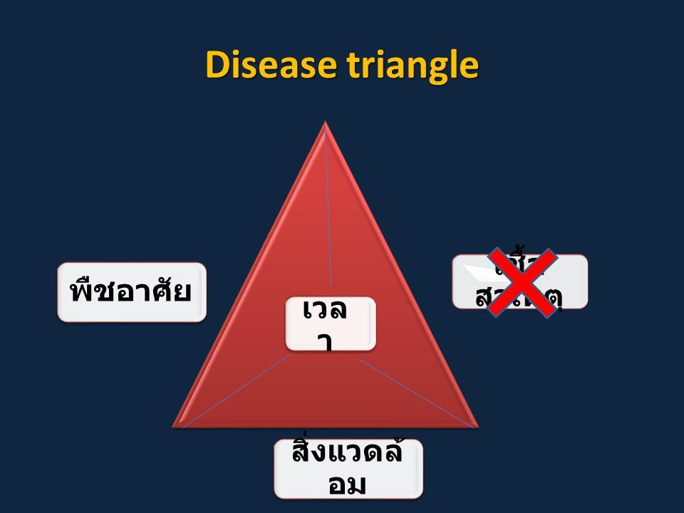 Disease triangle เชื้อสาเหตุ พืชอาศัย เวลา สิ่งแวดล้อม