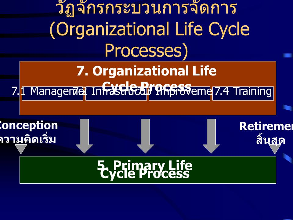 วัฏจักรกระบวนการจัดการ (Organizational Life Cycle Processes)
