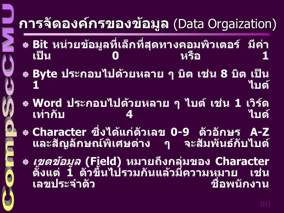 การจัดองค์กรของข้อมูล (Data Orgaization)