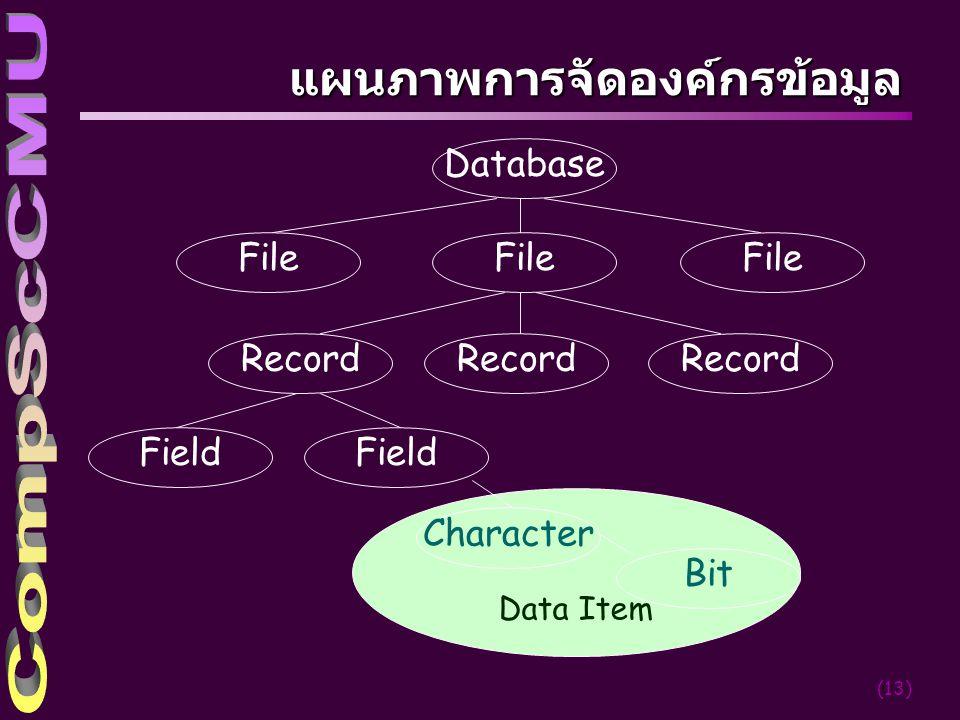 แผนภาพการจัดองค์กรข้อมูล