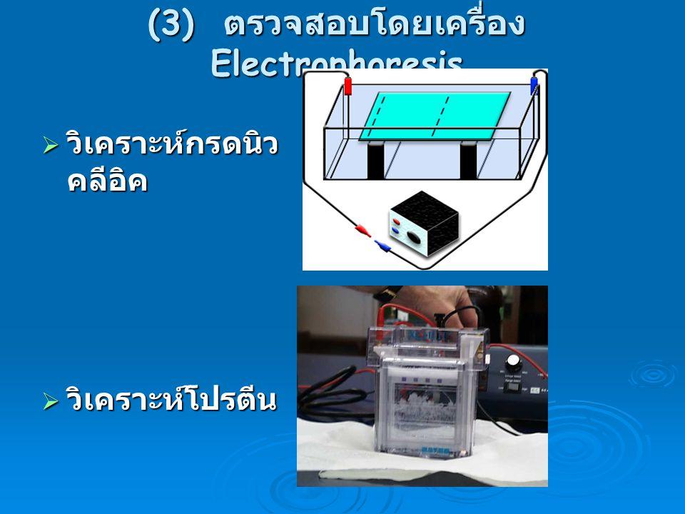 (3) ตรวจสอบโดยเครื่อง Electrophoresis