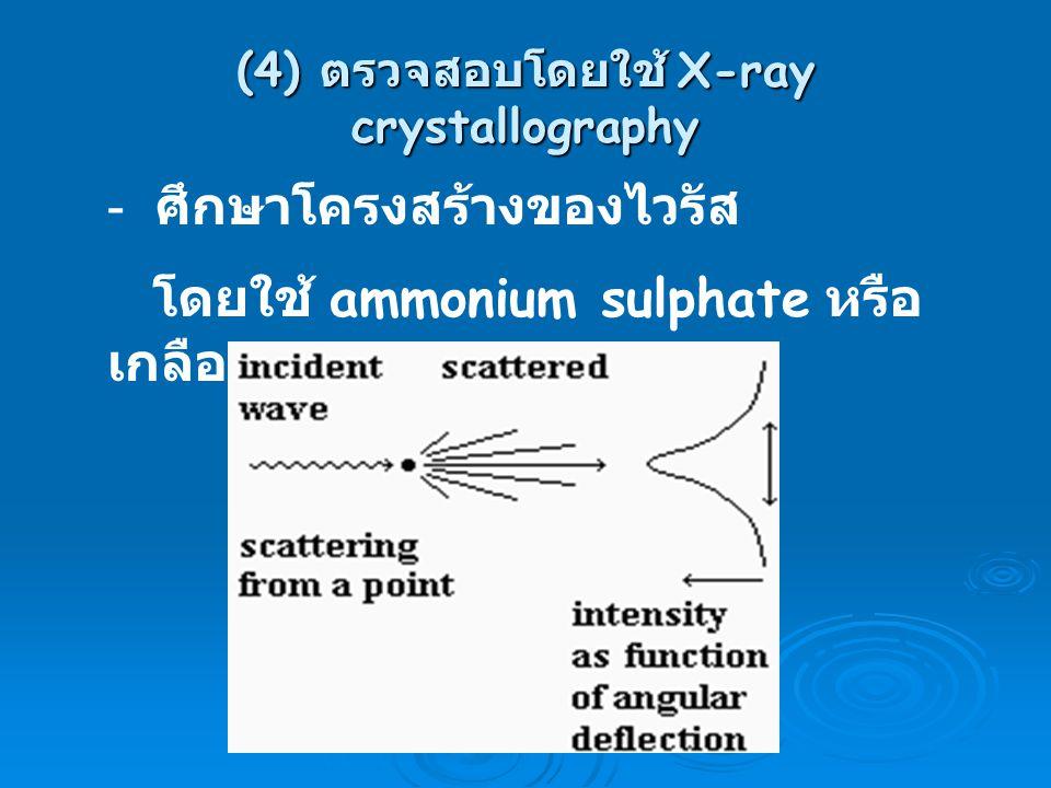 (4) ตรวจสอบโดยใช้ X-ray crystallography