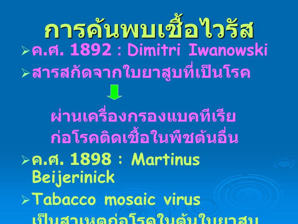 การค้นพบเชื้อไวรัส ค.ศ. 1892 : Dimitri Iwanowski
