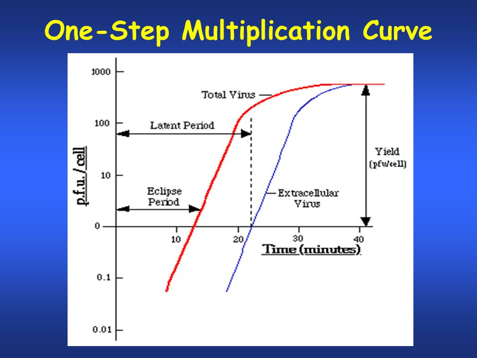 One-Step Multiplication Curve