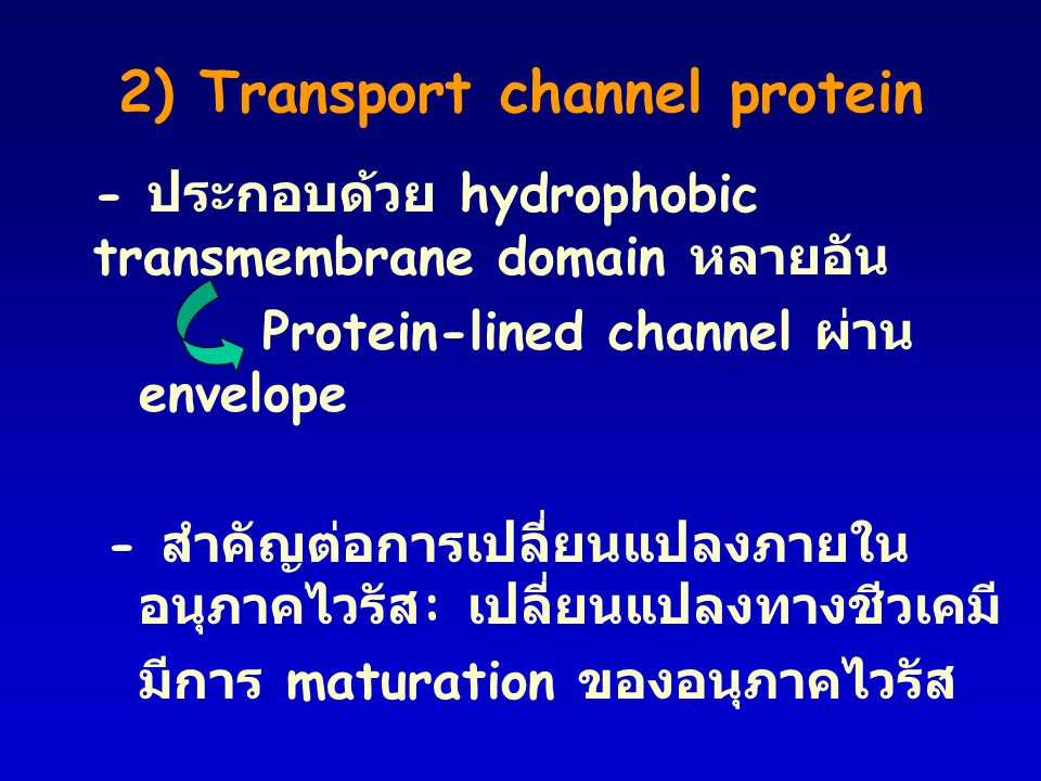2) Transport channel protein
