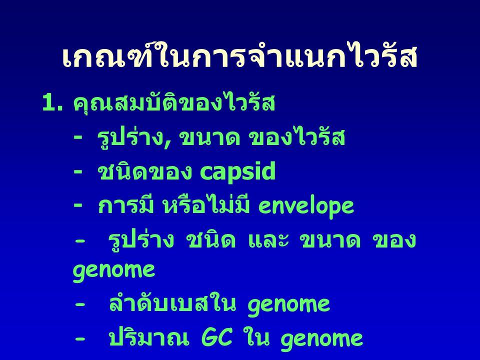 เกณฑ์ในการจำแนกไวรัส