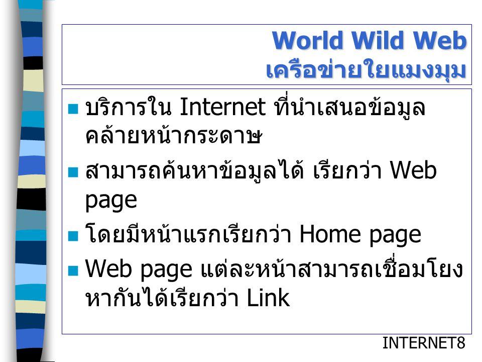 World Wild Web เครือข่ายใยแมงมุม
