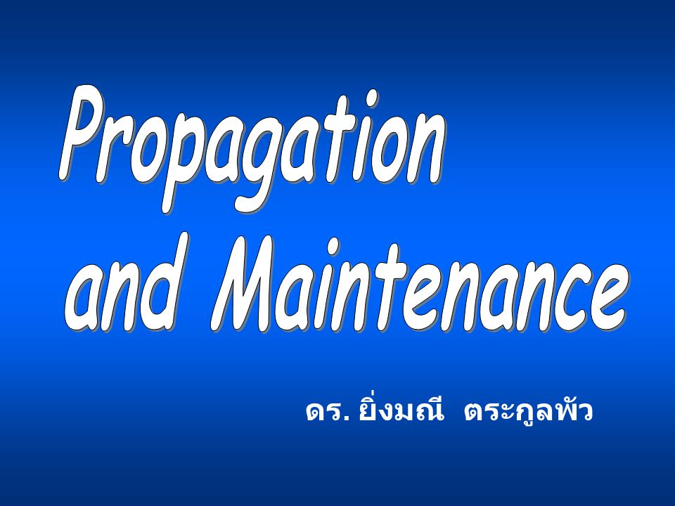 Propagation and Maintenance