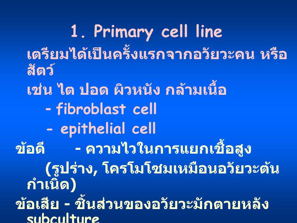 1. Primary cell line เช่น ไต ปอด ผิวหนัง กล้ามเนื้อ - fibroblast cell